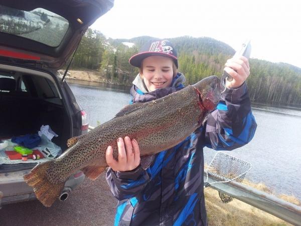 Regnbåge-Fiska i Småland