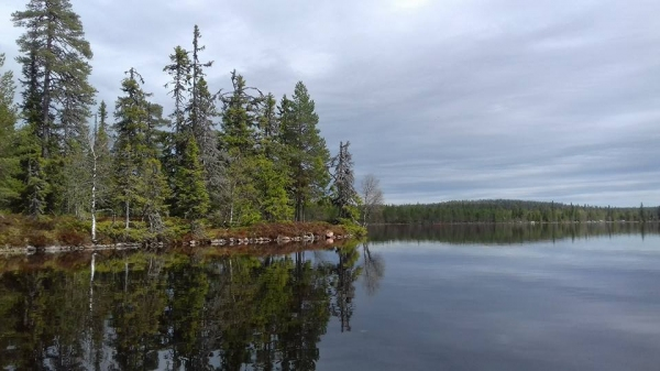 Utsikt i Knäsjön
