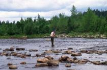 Fiskare i älven